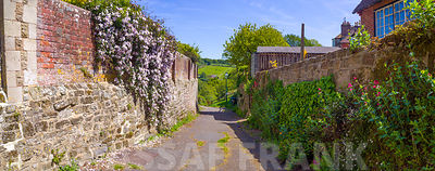 Narrow road in a village, Petworth, West Sussex