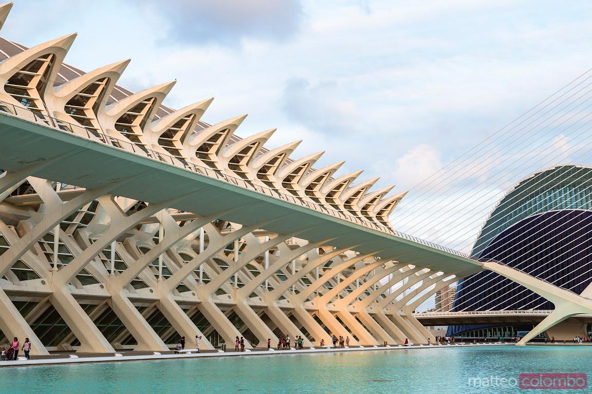 Museum of Science, City of Arts and Sciences, Valencia