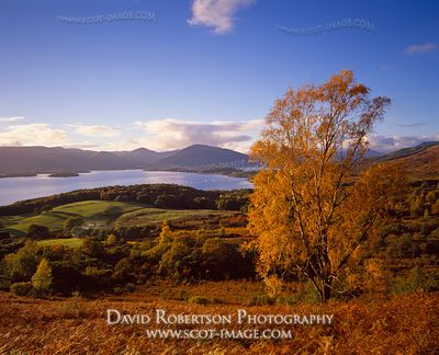 Image - Loch Lomond, view from Conic Hill