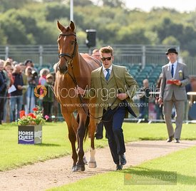 Simon Grieve and THE RUTMAN at the trot up, Land Rover Burghley Horse Trials 2019