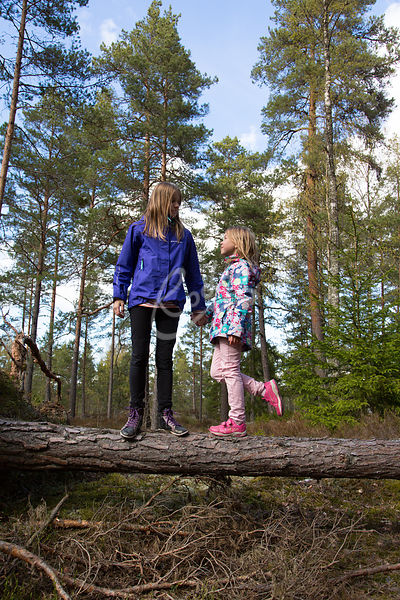 Lapset metsässä.|||Girls in the forest.