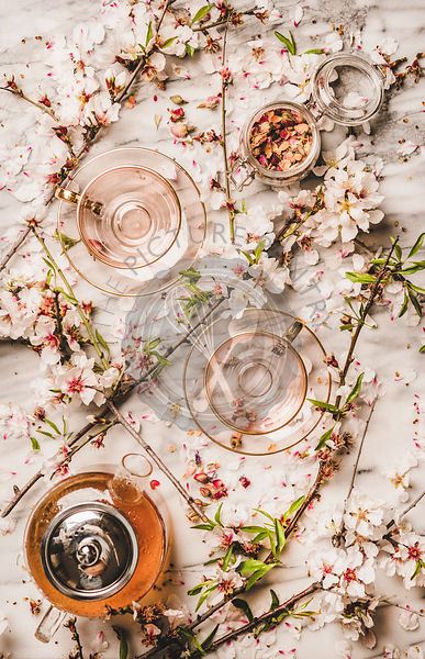 Flat-lay of black tea and blooming spring flowers, white background