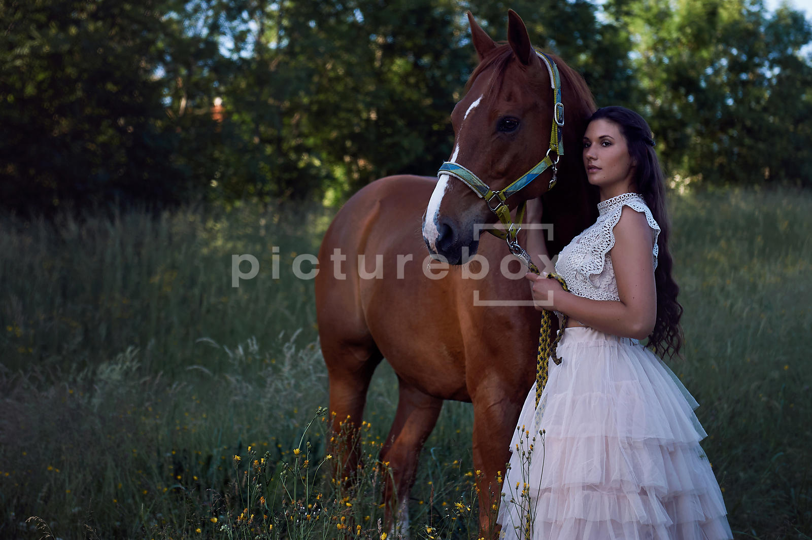 A woman in a white dress, holding the reins of a horse, in a meadow.