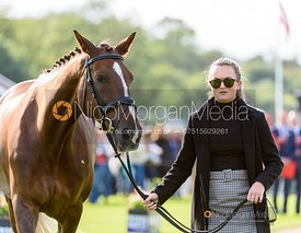 Caroline Clarke and TOUCH TOO MUCH at the trot up, Land Rover Burghley Horse Trials 2019