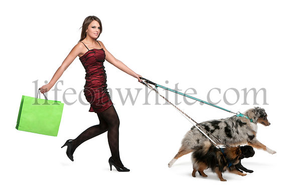 Young woman walking dogs on leash and holding shopping bag