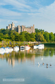 Arundel Castle from the River Arun - BP2524E