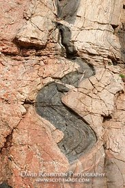 Image - Lewisian Gneiss