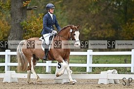 British dressage. Stapleford Abbotts. United Kingdom ~ MANDATORY Credit Garry Bowden/SIP photo agency - NO UNAUTHORISED USE -...