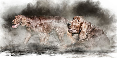 Art-Digital-Alain-Thimmesch-Chien-939