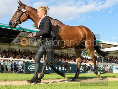 Izzy Taylor and SPRINGPOWER at the trot up, Land Rover Burghley Horse Trials 2019