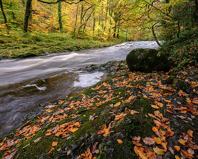 Autumn_colours_-_River_Dart