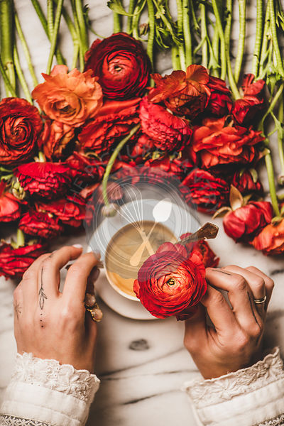 Womans hand holding red flower over table with coffee