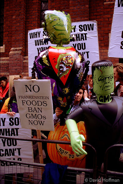 GM Food Protests