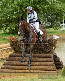 Alan Nolan and GARCON DE LUX - Aston Le Walls Horse Trials 2019.