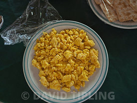 Scrambled eggs made from harvested eggs from Melanesian Megapode Megapodius eremita  Savo Island, Solomon Islands, South Pacific
