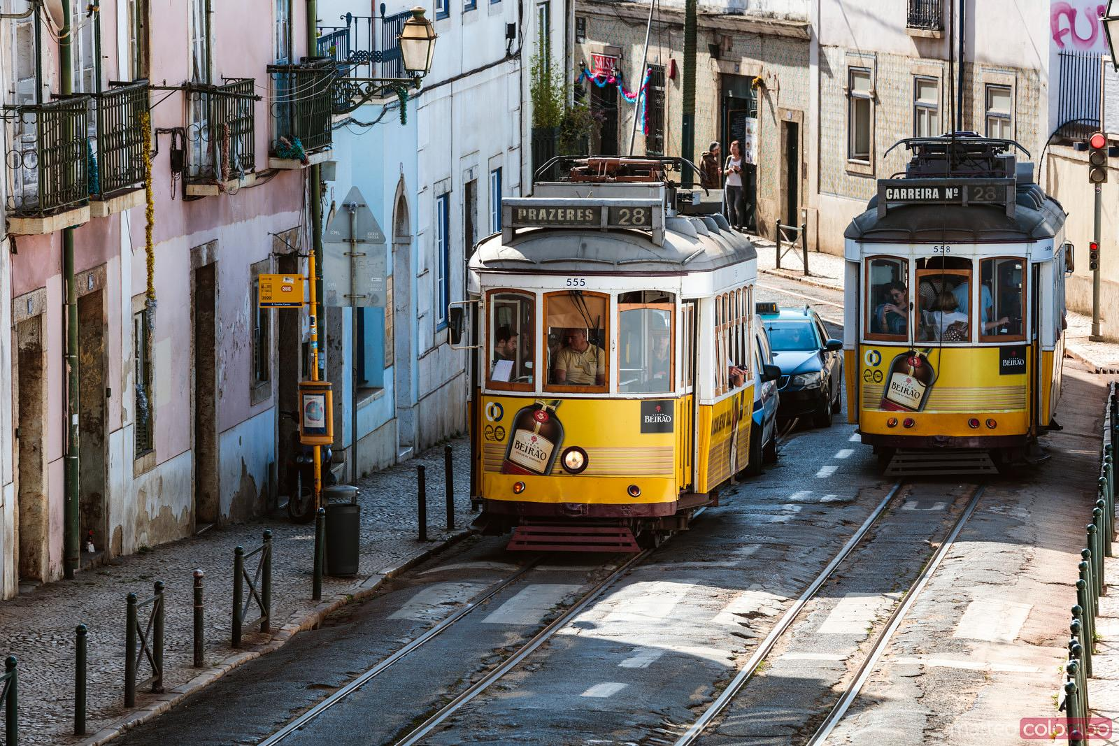 Elevated view of two trams in the streets of Lisbon, Portugal