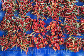 Chili Peppers for sale in Honiara produce market on Guadalcanal, Solomon Islands, South Pacific