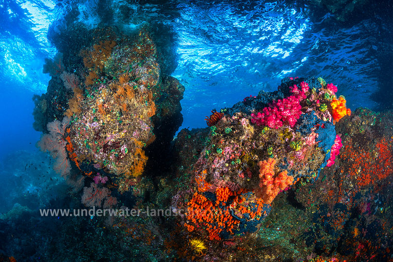 Underwater colors