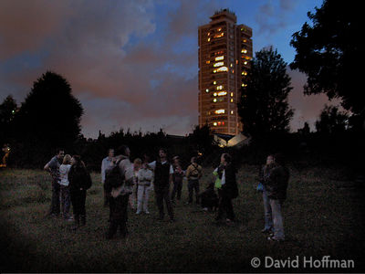 Escorted bat walk in Tower Hamlets cemetery.
