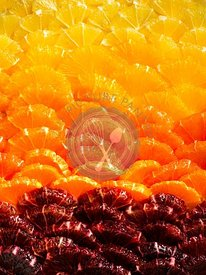 Detail image of a beautiful citrus tart with a gradient of red, orange and yellow citrus.