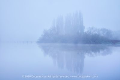 Limited edition Giclée fine art print of Trees on the River Thames at Chertsey Bridge