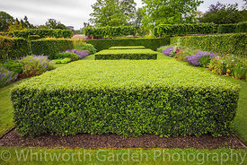 Clipped Buxus hedges in the Spring and Summer Box Borders at Scampston Hall Walled Garden, North Yorkshire, designed by Piet ...