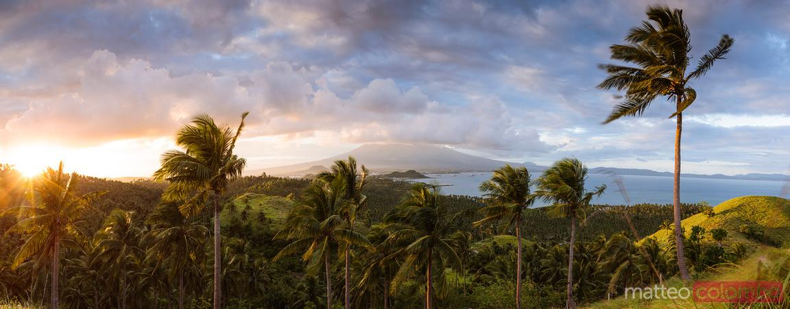 Valley with palm trees at sunset, Albay, Philippines