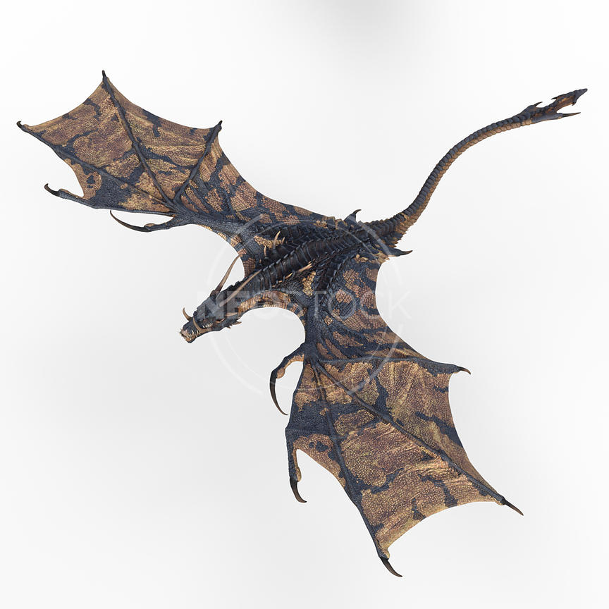 14-CG-creature-ultimate-dragon-wyvern-neostock