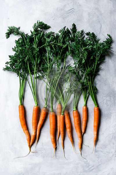 Fresh ripe carrots on a grey background