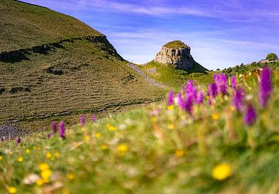 Spring morning at Peter's Stone in Cressbrook Dale
