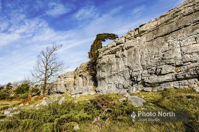 WHITBARROW 25A - Limestone Escarpment