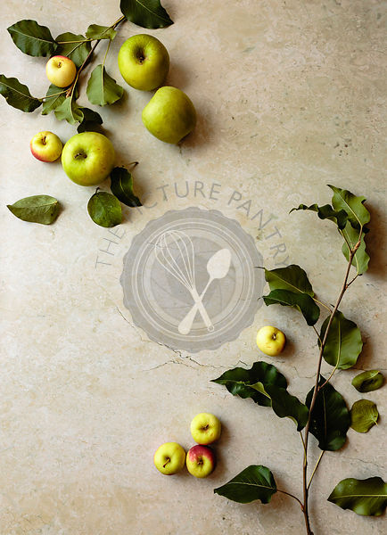 Apples with leaves and branches on a beige marble background; copy space.
