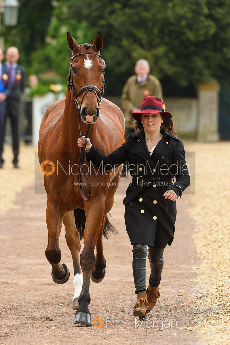 Laura Collett and MR BASS at the trot up, Mitsubishi Motors Badminton Horse Trials 2019
