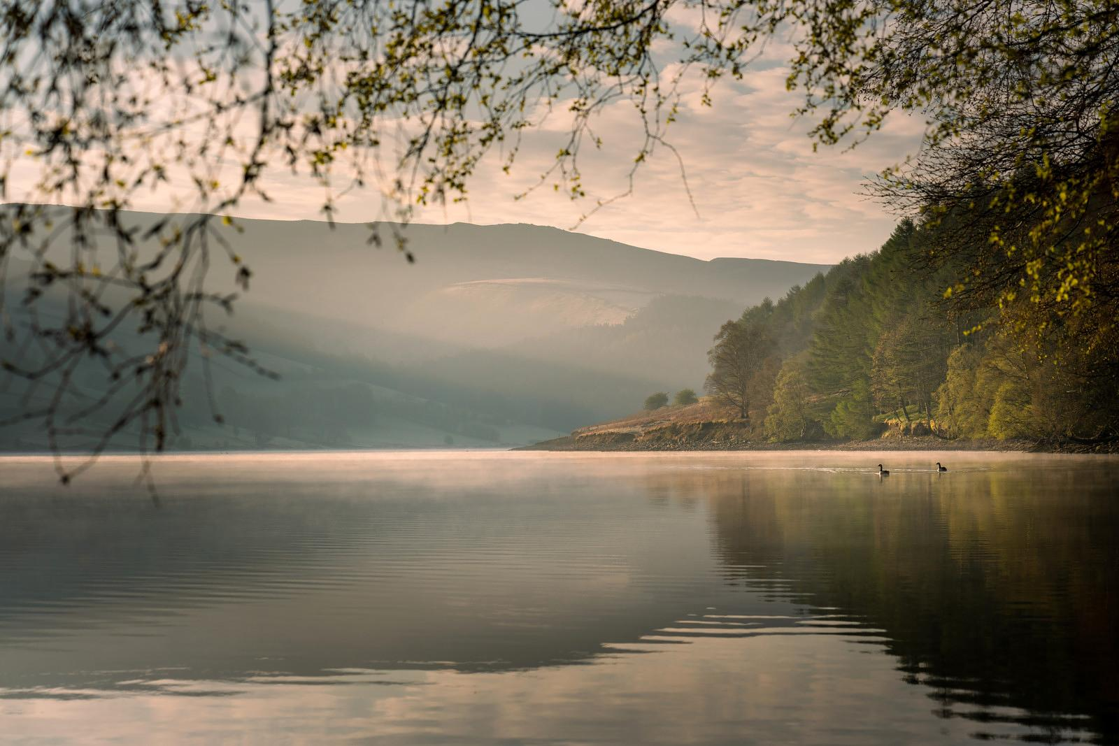 Morning at Ladybower