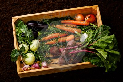 Fresh raw ripe vegetables Healthy food in wooden box on black ground background