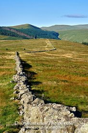 Image - Drystone wall on Innerdownie, Ochil Hills, Perth and Kinross, Scotland.  View looking west