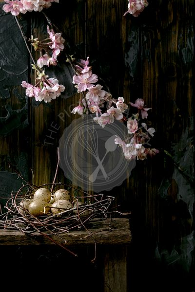 Easter dark rustic still life with blooming branch