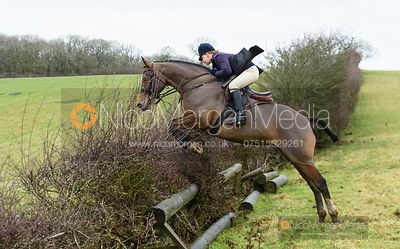 Kat Robinson jumping a fence. The Cottesmore and Fernie Hunts at Hill Top 10/12