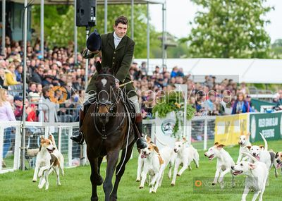 Duke of Beaufort's hound parade - Mitsubishi Motors Badminton Horse Trials 2019
