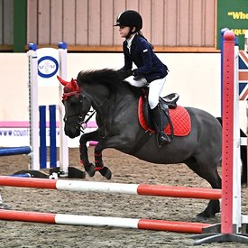 05/01/2020 - Class 2 - Unaffiliated showjumping - Brook Farm training centre