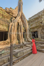An unidentfied woman in a red dress looking at the treee roots of a silk-cotton tree at Ta Phrom Temple in Cambodia.