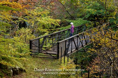 Prints & Stock Image - Female walker on a footbridge in Glen Lyon, Perth and Kinross, Scotland.  Autumn.