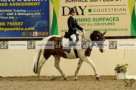 Dressage. Stapleford Abbotts. United Kingdom ~ MANDATORY Credit Ellen Szalai/Sport in Pictures - NO UNAUTHORISED USE - 07837 ...