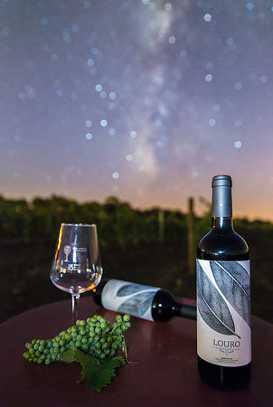 Wine & The Milky Way