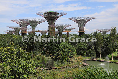 Gardens By The Bay with Supertrees, Singapore, Southeast Asia