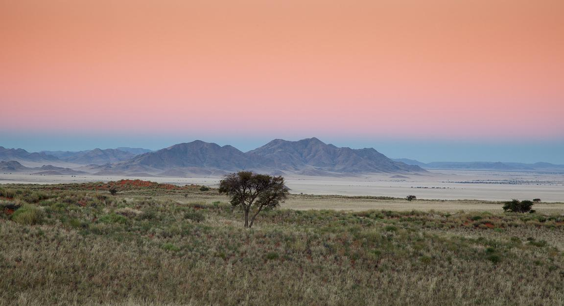 Orange tones in the sky at dusk in the Namib Naukluft savannah or desert in Namibia.