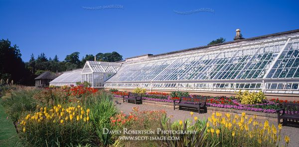 Image - Culzean Vinery greenhouse, South Ayrshire, Scotland