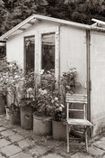 Tuin 5 in Timeless Sepia