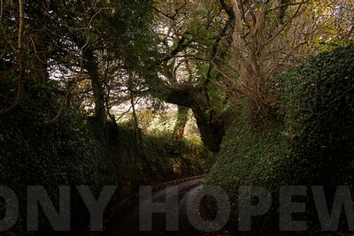 Holloways_and_Tramways-1000504