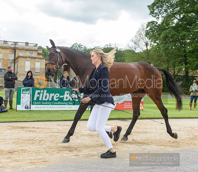 Storm Straker and WELL DESIGNED at the trot up, Equitrek Bramham Horse Trials 2019